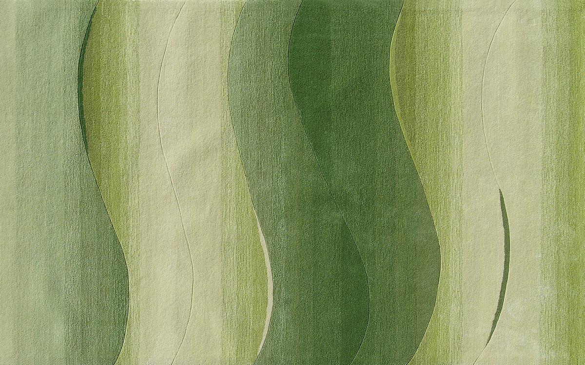 Dino Basic 260 dunkelgrün Teppich bei tepgo kaufen